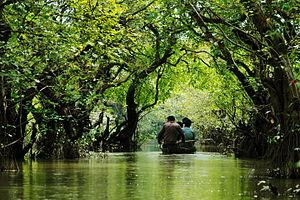 ratargul swamp forest